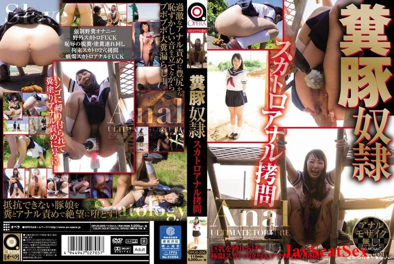 OPUD-206 Outdoor scat Ogawa Michiru shit pig slave scat anal torture. Defecation SD (2.20 GB)