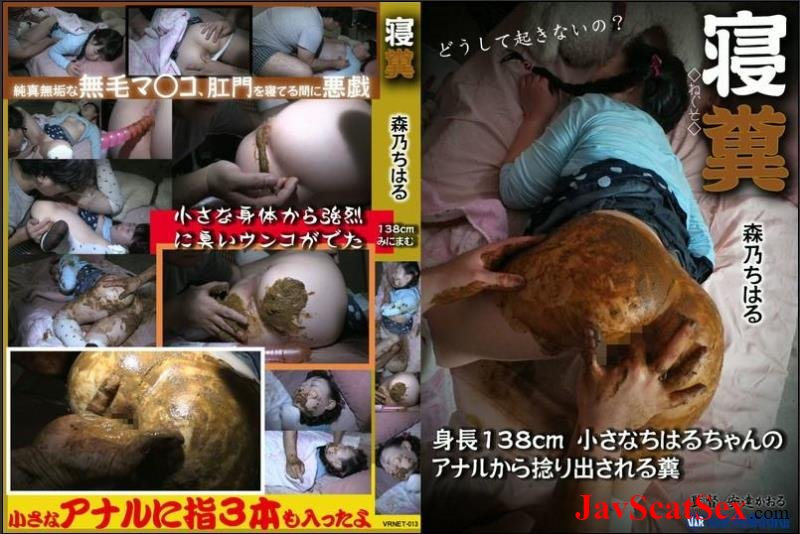 VRNET-013 VRXS Sleeping girls defecation and anal masturbation. Defecation SD (1.62 GB)