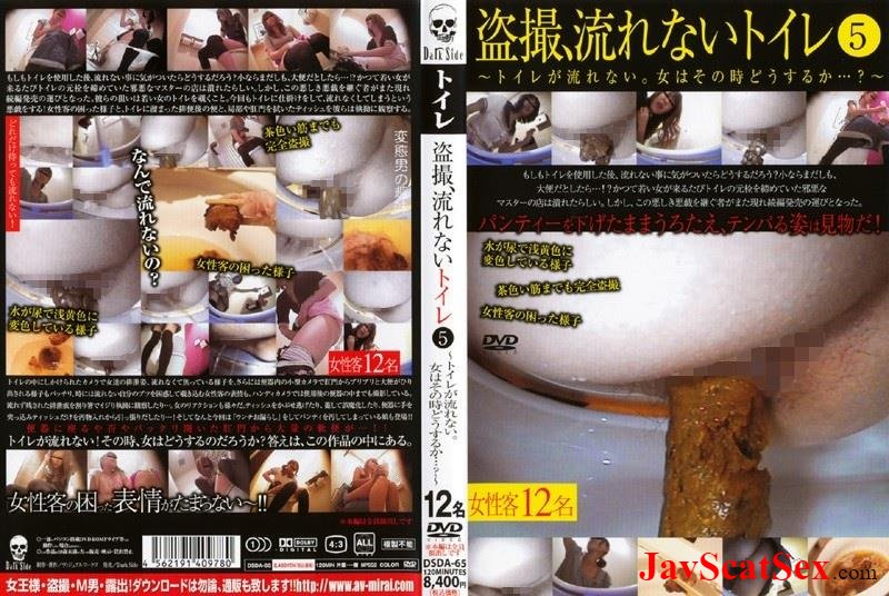 DSDA-65 Toilet scat Defecation voyeur, toilet does not flow 5. Defecation SD (1.91 GB)