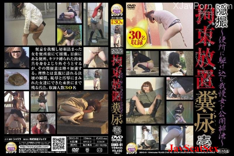 DBKS-01 Toilet 隠撮 拘束放置糞尿 Golden Showers SD (1.02 GB)